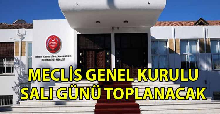 ozgur_gazete_kibris_Cumhuriyet_Meclisi_Genel_Kurulu_Sali_gunu-_toplanacak