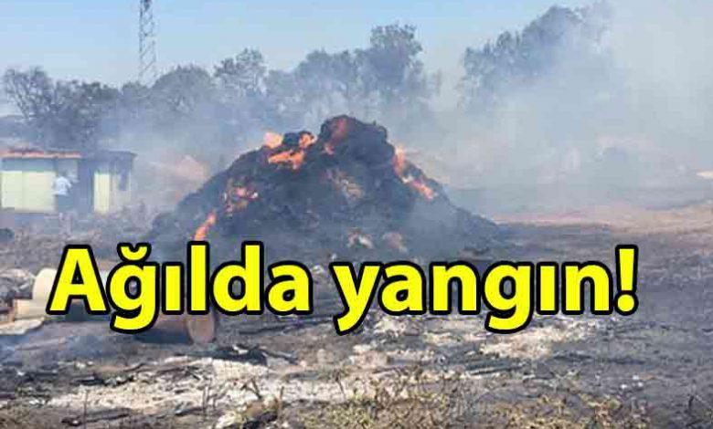 ozgur_gazete_kibris_Gazimağusa'da_Karakeşliler_Ağıllar_Bölgesi'nde_yangın_çıktı