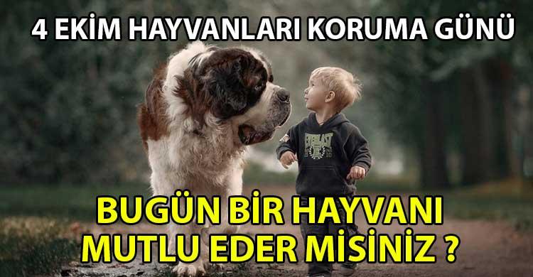 ozgur_gazete_kibris_Hayvanlari_korumak_icin_neler_yapabiliriz