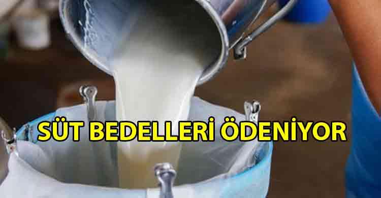 ozgur_gazete_kibris_Çiğ_süt_bedellerinin_yüzde_60'ı_ödeniyor
