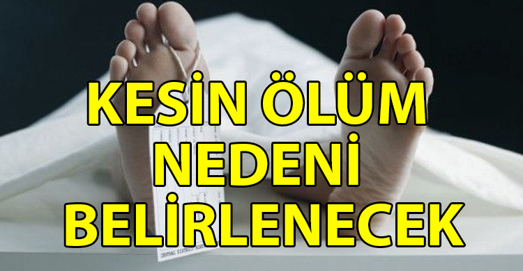 ozgur_gazete_kibris_Cinar_dan_kan_ve_doku_ornekleri_alindi