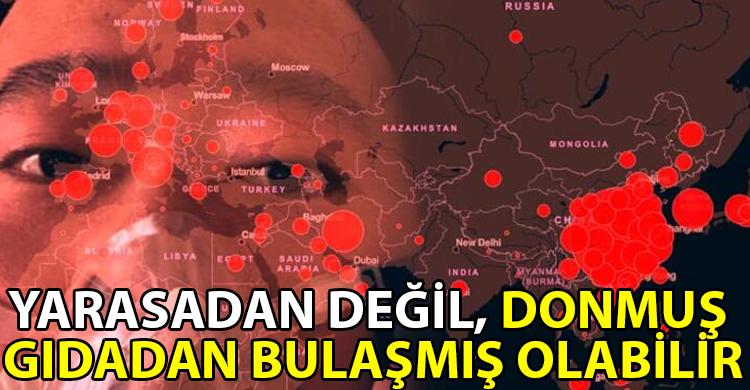 ozgur_gazete_kibris_cin_covid_yarasa