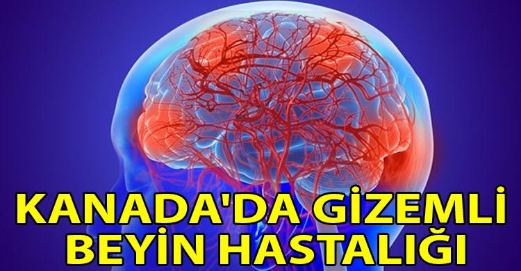 ozgur_gazete_kibris_5_kisi_hayatini_kaybetti