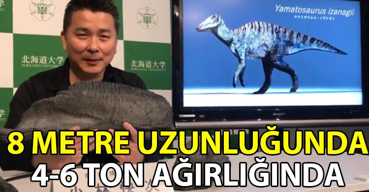 ozgur_gazete_kibris_japon_bilim_insanlari_dinozor