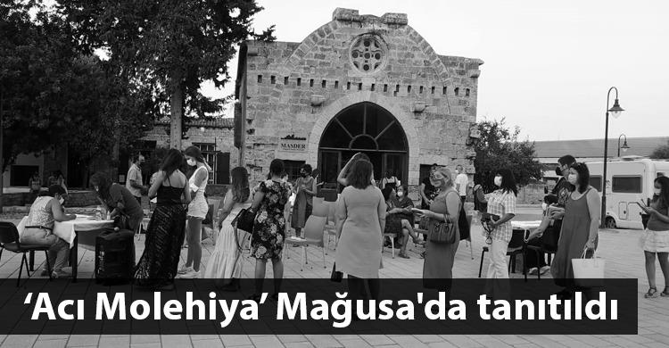 ozgur_gazete_kibris_aci_molehiya_tanitim